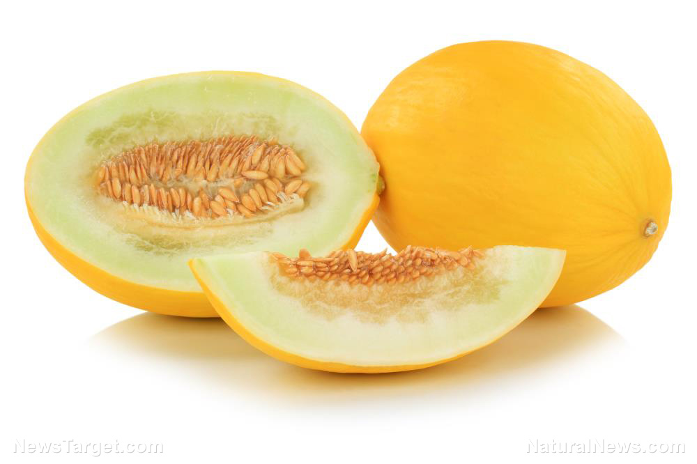 Image: Battle of the melons: What are the differences between cantaloupes and honeydews?