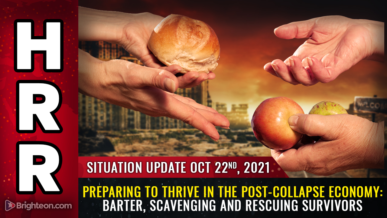 Image: Preparing to THRIVE in the post-collapse economy: Scavenging, barter, off-grid food production and rescuing survivors